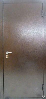 двери металлические 21 10